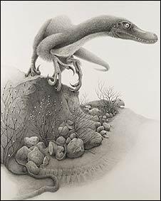 Tsaagan mangas, pariente del Linheraptor (Gráfica: Nick Frankfurt)
