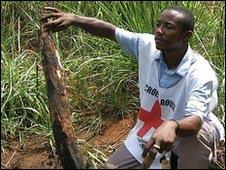 Pembantaian di Kongo