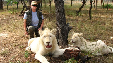 Jenny Schmidt com os leões Zuba e Cobra (foto: cortesia de Jenny  Schmidt)