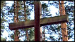 Крест на могиле поляков в местечке Медное