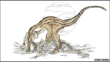 Velociraptor devorando al Protoceratops (B. Booth)