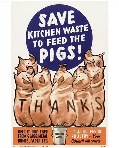 Берегите кухонные отходы для кормежки свиней!