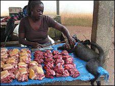 Mercado de carne de caza en Africa