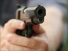 Arma de fogo (arquivo)