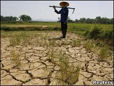 Sequía en Vietnam