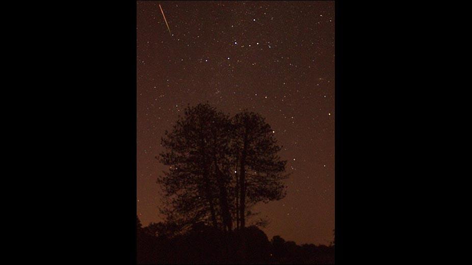Bbc mundo ciencia y tecnolog a en fotos y llovieron for Una estrella en el jardin