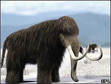 Mamuts
