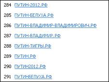 """Скриншот с сайта регистрации домендов """"рф"""""""