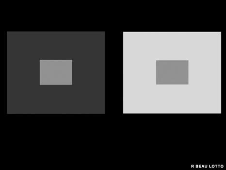 Иллюзия контраста