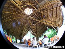 Tehco de bambú