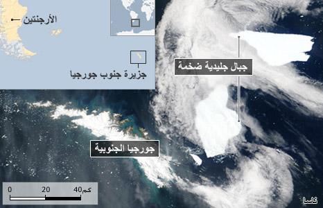 العلماء يدرسون تفاصيل تأثير ذوبان الجليد على الحياة 101215151013_south_georgia_arabic_466