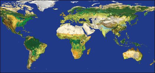 Mapa de la superficie de la Tierra ( Imagen: ESA)
