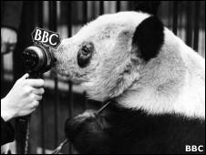 明和BBC的麦克风