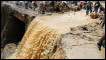 Corpos de vítimas de deslizamento de terra em Teresópolis