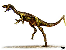 Eodromaeus