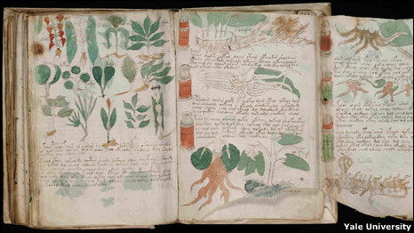 Manuscrito Voynich (Foto: Beinecke Rare book and Manuscript LIbrary, Yale University