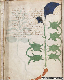 Página del manuscrito Voynich. (Foto: Beinecke Rare book and Manuscript LIbrary, Yale University).