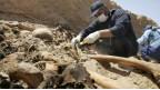 اكتشاف مقبرة جماعية بالعراق