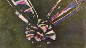 Primera fotografía a color