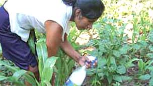 Agricultora Foto gentileza FAO