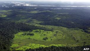 Amazônia brasileira (Arquivo / AFP)