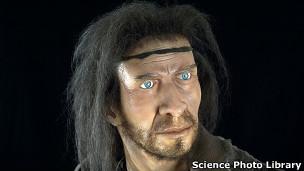 Modelo del Homo sapiens