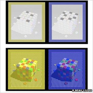 ¿De qué color son los cuadritos realmente?