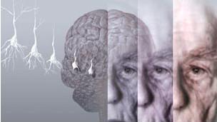 Collage de un rostro