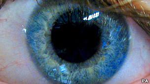 Iris azul