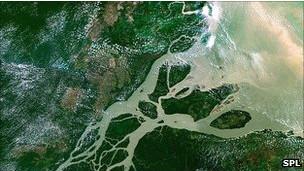 Amazon aérea