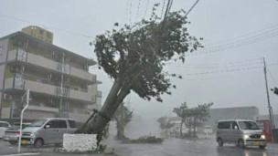 日本今年早些时候遭受台风袭击(新华图片)