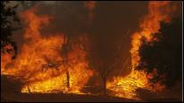 Техас у вогні