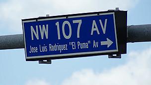 Avenida de El Doral