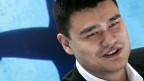 Diêu Minh vận động người Trung Quốc ngưng ăn vây cá mập