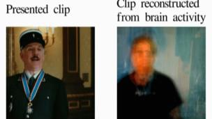 Imagem à direita foi feita a partir de dados do cérebro de um voluntário