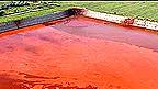 Vertido tóxico tras el desastre ambiental en Hungría en octubre de 2010 Foto AP