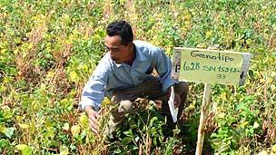 Agricultor en Nicaragua Foto gentileza CIAT