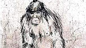 Dibujo del yeti