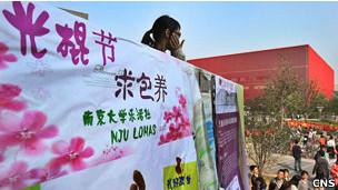 """写着""""光棍节,求包养""""的海报出现在南京一所高校校园内,吸引了不少眼球。"""