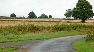 खेत (फ़ाइल)