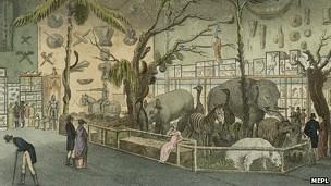 Museo de Bullock