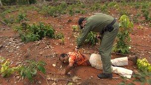 Operativo en la Amazonía