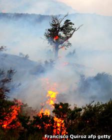 Incendio en Torres del Paine