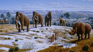 Impressão artística da fauna na região da atual Espanha durante a última Era Glacial