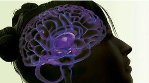 Buscan establecer si la susceptibilidad a la adicción es hereditaria   120203041705_addiction_brain_304x171_na_nocredit