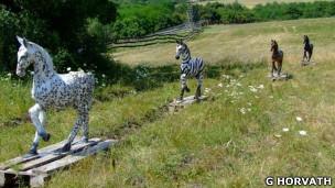 Caballos usados para encontrar el sentido de las rayas de las cebras.
