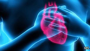 أبحاث القلب
