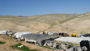 ذاغه های فلسطینیان