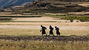mujeres caminan en un terreno africano