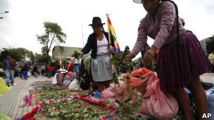 Hojas de coca en un mercado de Bolivia